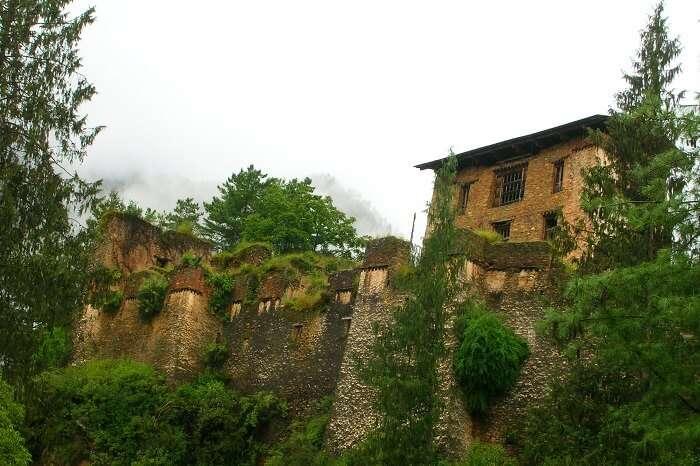 Drukgyel_Dzong paro