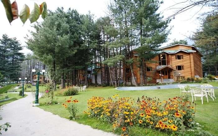 Grand Mumtaz Resort amid deodar trees
