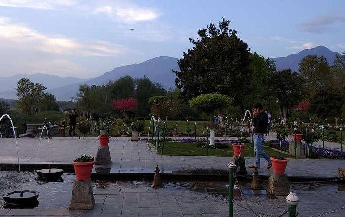 beautiful garden in srinagar