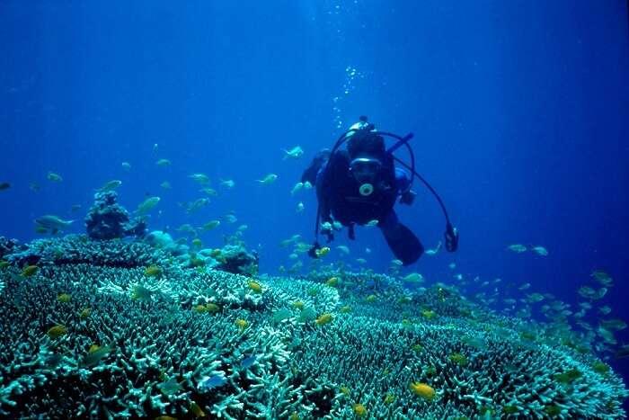 Mactan Island philippines