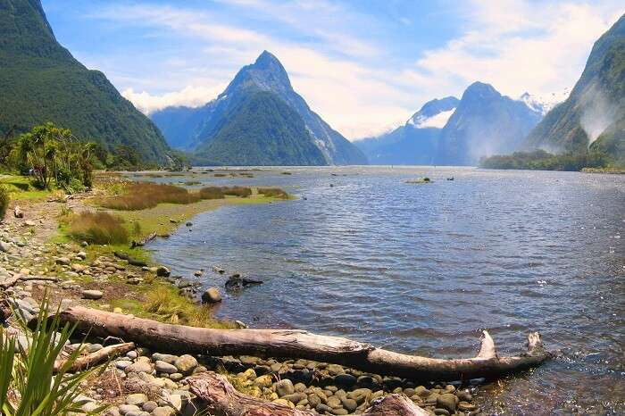 Milford Sound queenstown