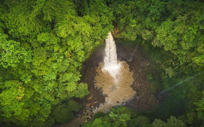 a giant waterfall right in the middle of jungle seen from above