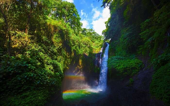 a rainbow waterfall amid forests