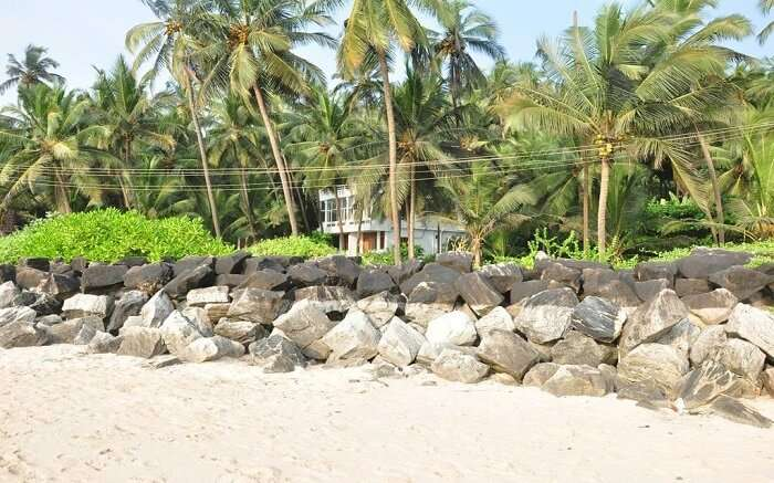 a sandy beach in front of White Shell Beach Resort and Spa s