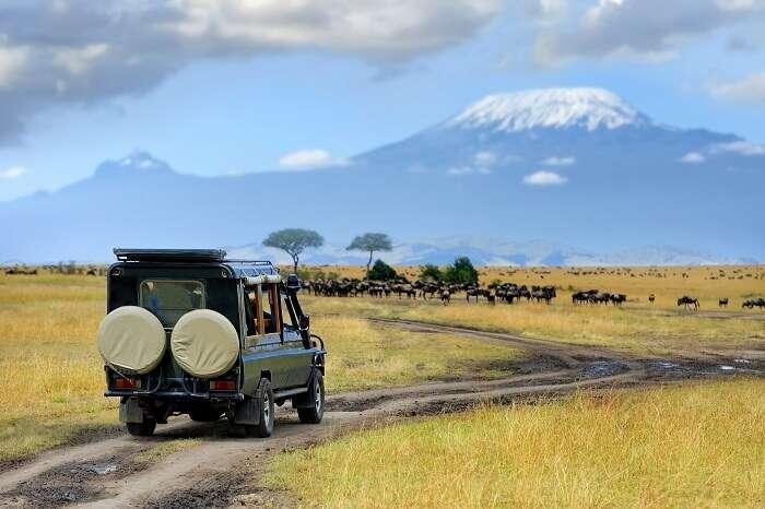 acj-2906-masai-mara-national-park (16)