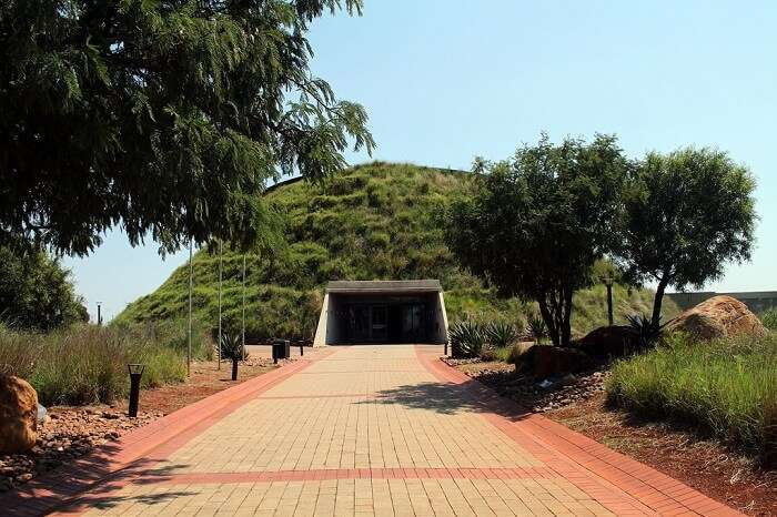 Exploring the Cradle of Humankind