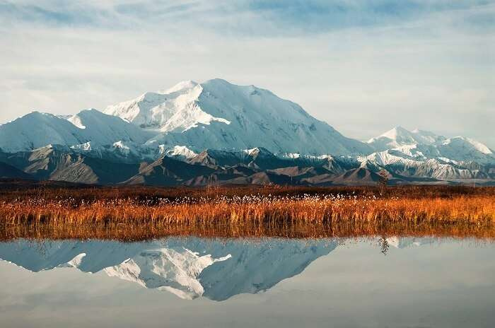 denali-national-park-alaska