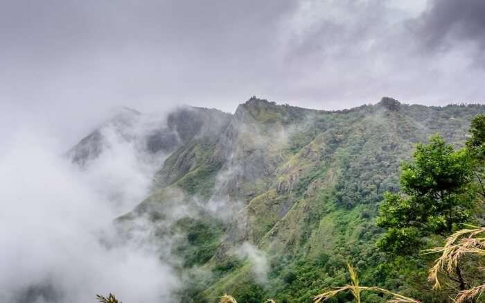 misty mountains of Kerala ss27062018