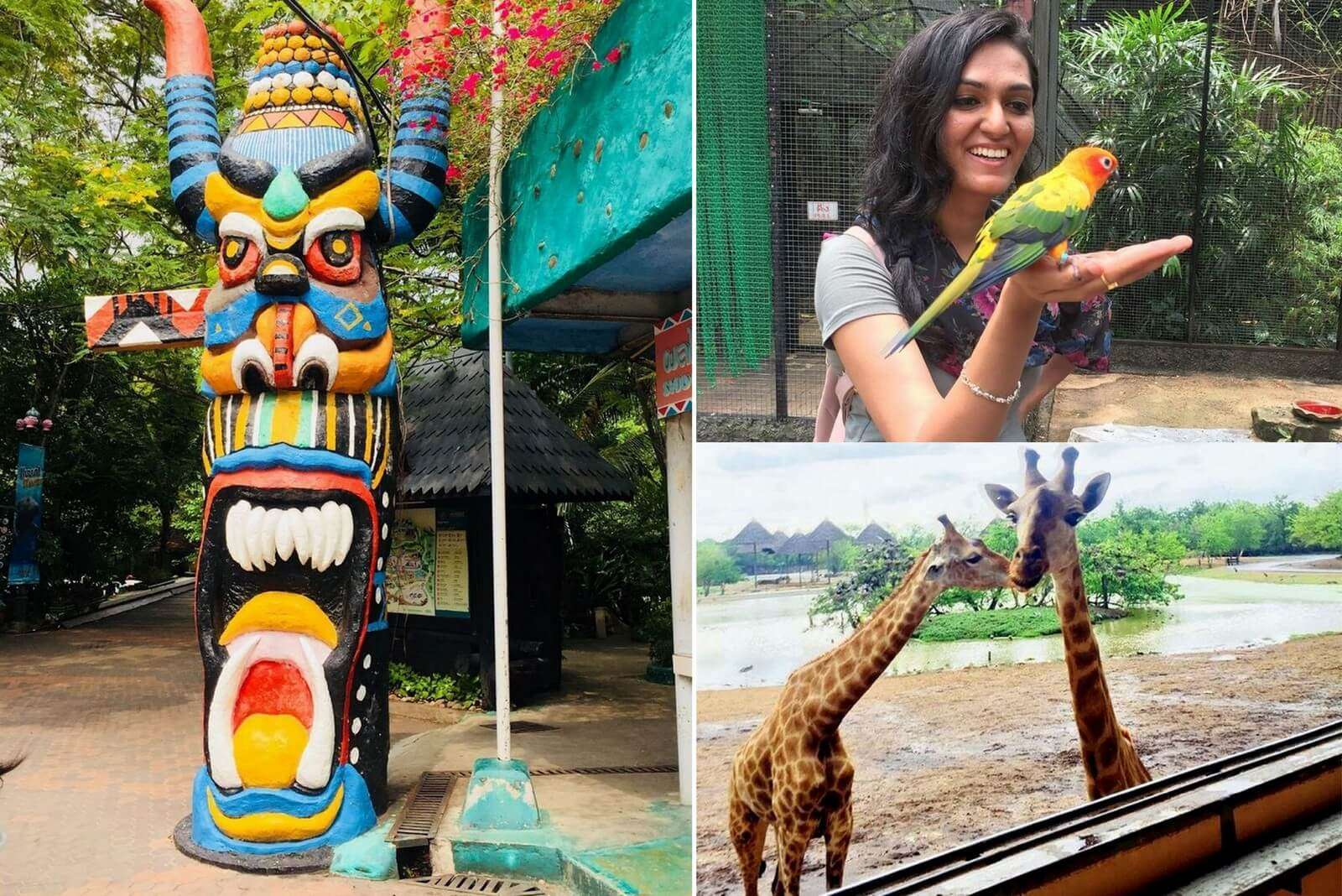 pooja thailand all girls trip collage