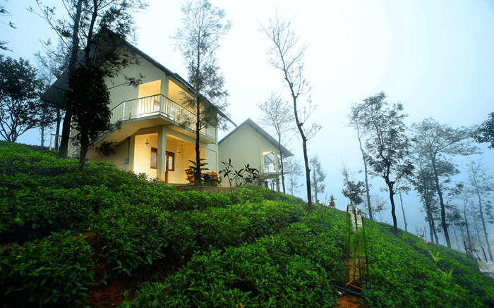 the beautiful Winter Vale amid tea gardens
