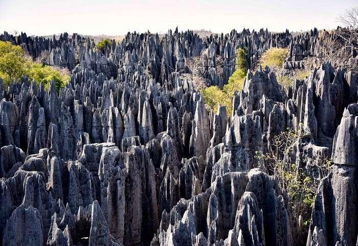 limestone spikes