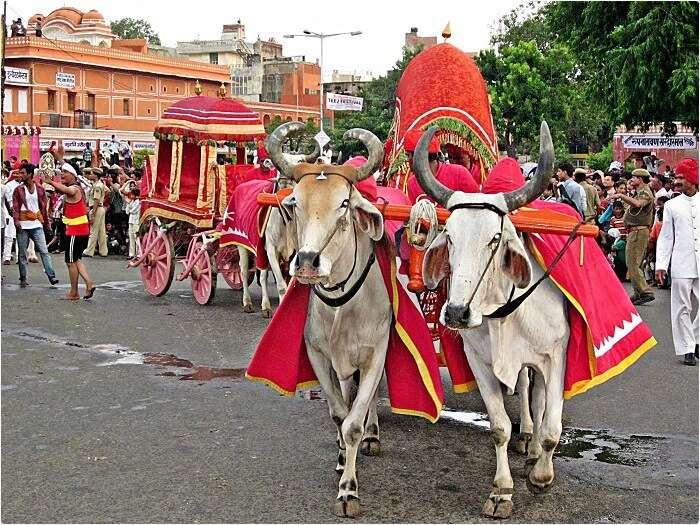 Festival_of_teej_in_India._-_panoramio_(2)