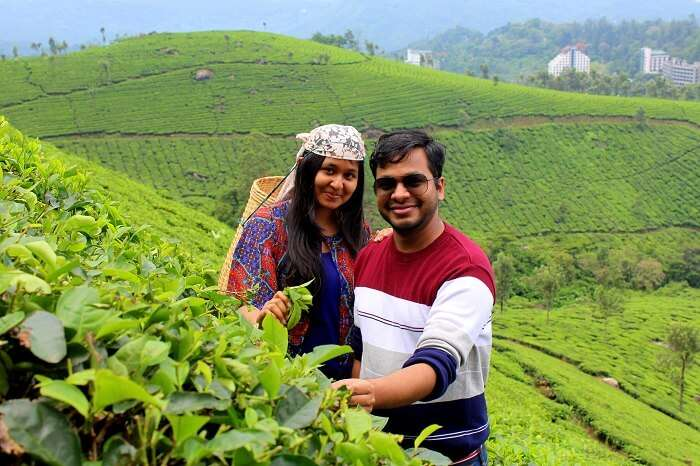 couple amidst tea plantations