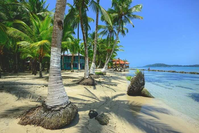 Isla Carenero Bocas del Toro Panama