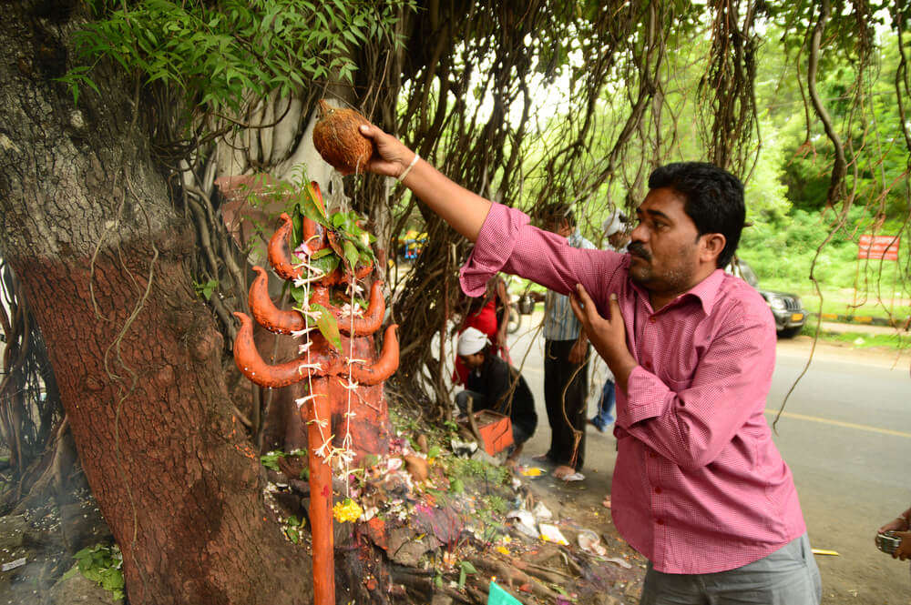 most unique and courageous festivals where snakes are worshipped