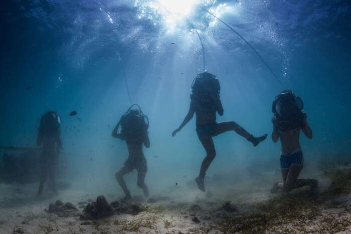 enjoy the underwater activities