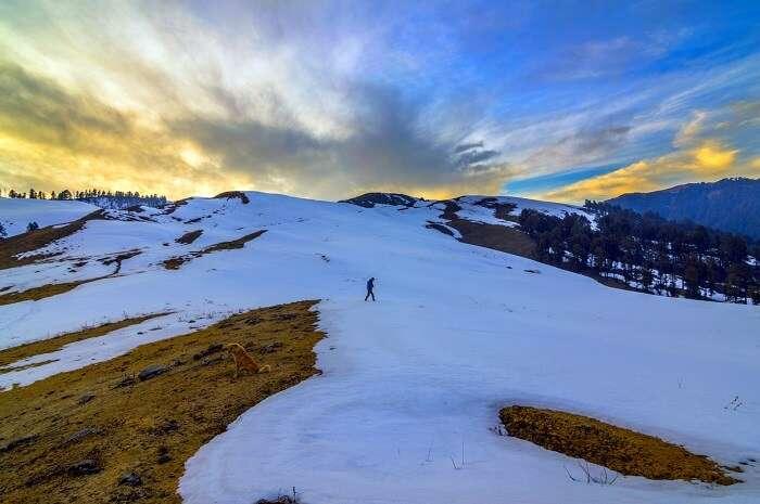 Taste The Thrill Of Trekking uttarkashi
