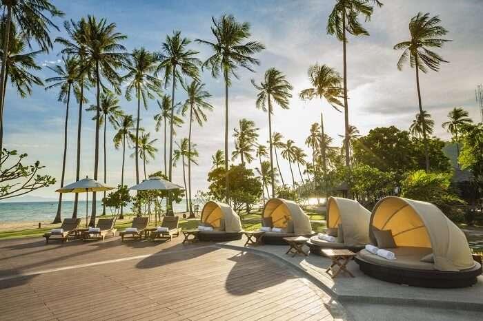 luxury resort in phi phi