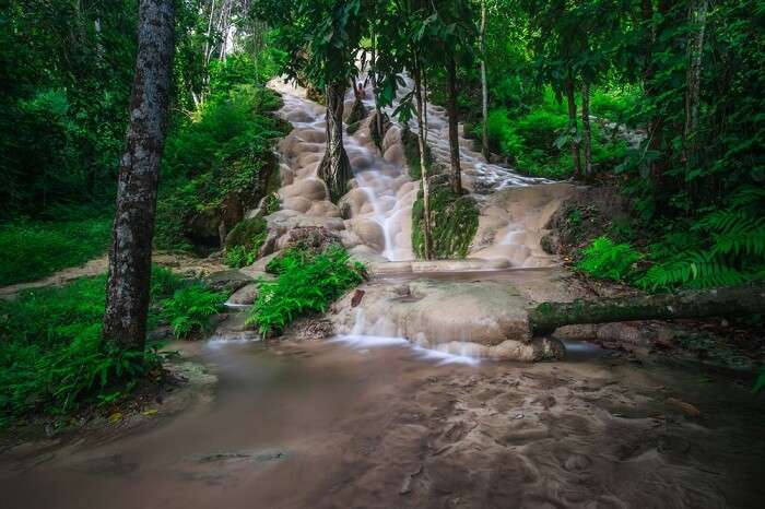 Climb the bua tong waterfalls in thailand