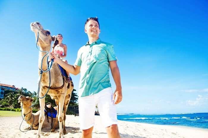 a tropical island like Bali offers camel safaris