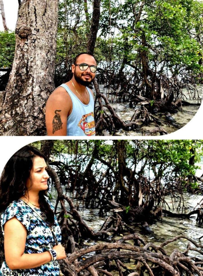 honeymoon couple at mangrove