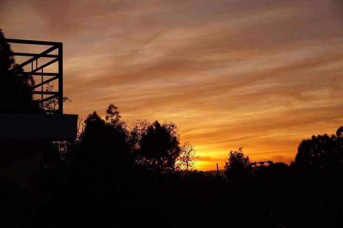 view from rhodo resort