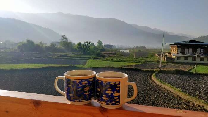 rohit bhutan family trip travelogue tea