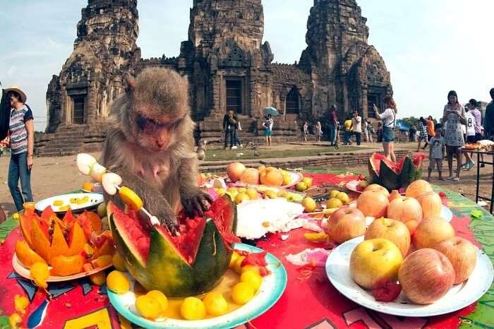 Lopburi Monkey Banquet