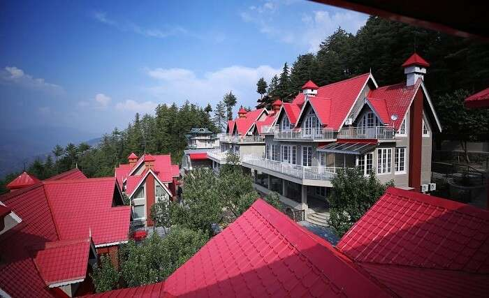 summit resort mashobra