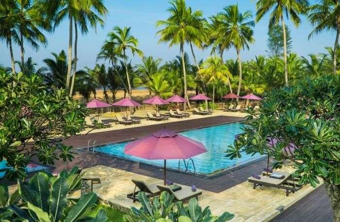 Pool view in resort