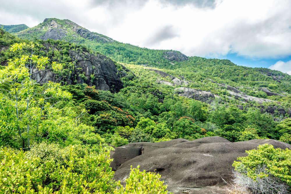 Copllia Trail in Morne Seychellois National Park