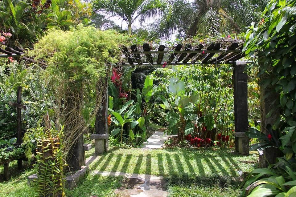 La Misere Exotics Garden Centre
