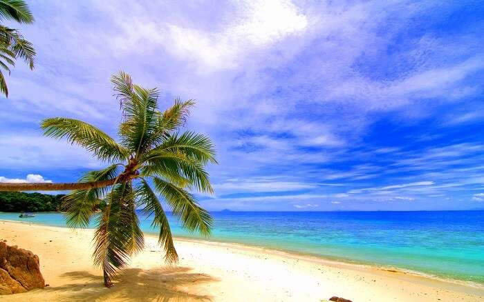 Day time view of Lang Tengah Island