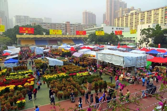 Lunar New Year Fair