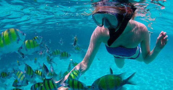 top sites for diving in UAE