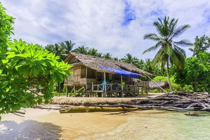 Muschu Island