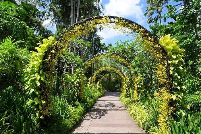The Gardens house a whole rainforest as well