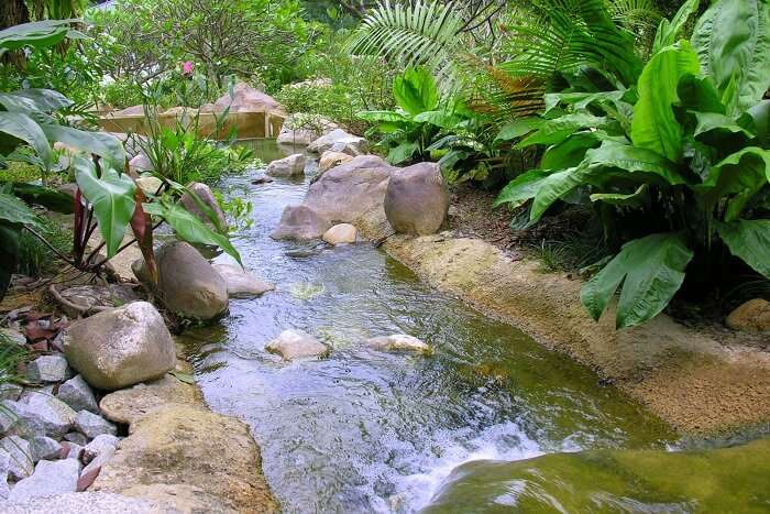 You can laze around the Saraca Stream