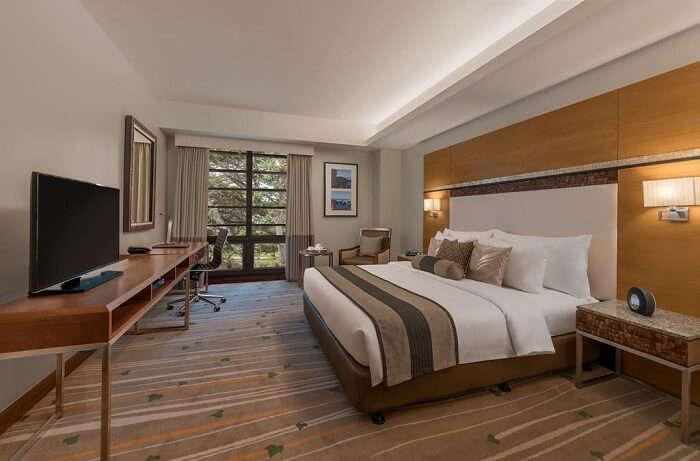 ivywall hotel