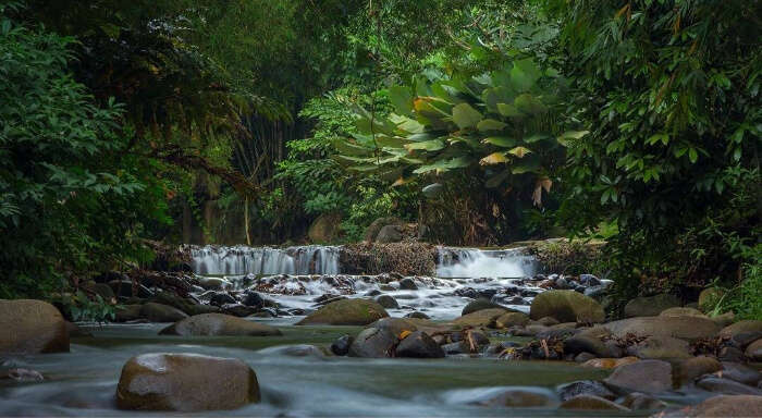 Surrounded by tropical rain forest