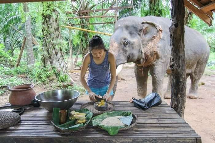 cookking in Khao Sok jungle