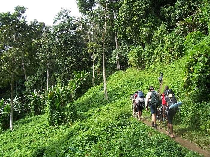 an experience of trekking is worth seeking