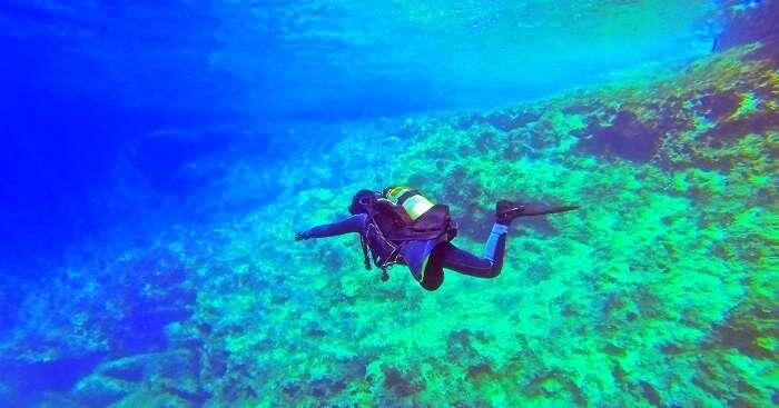 person diving into ocean