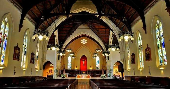 catholic church in new zealand