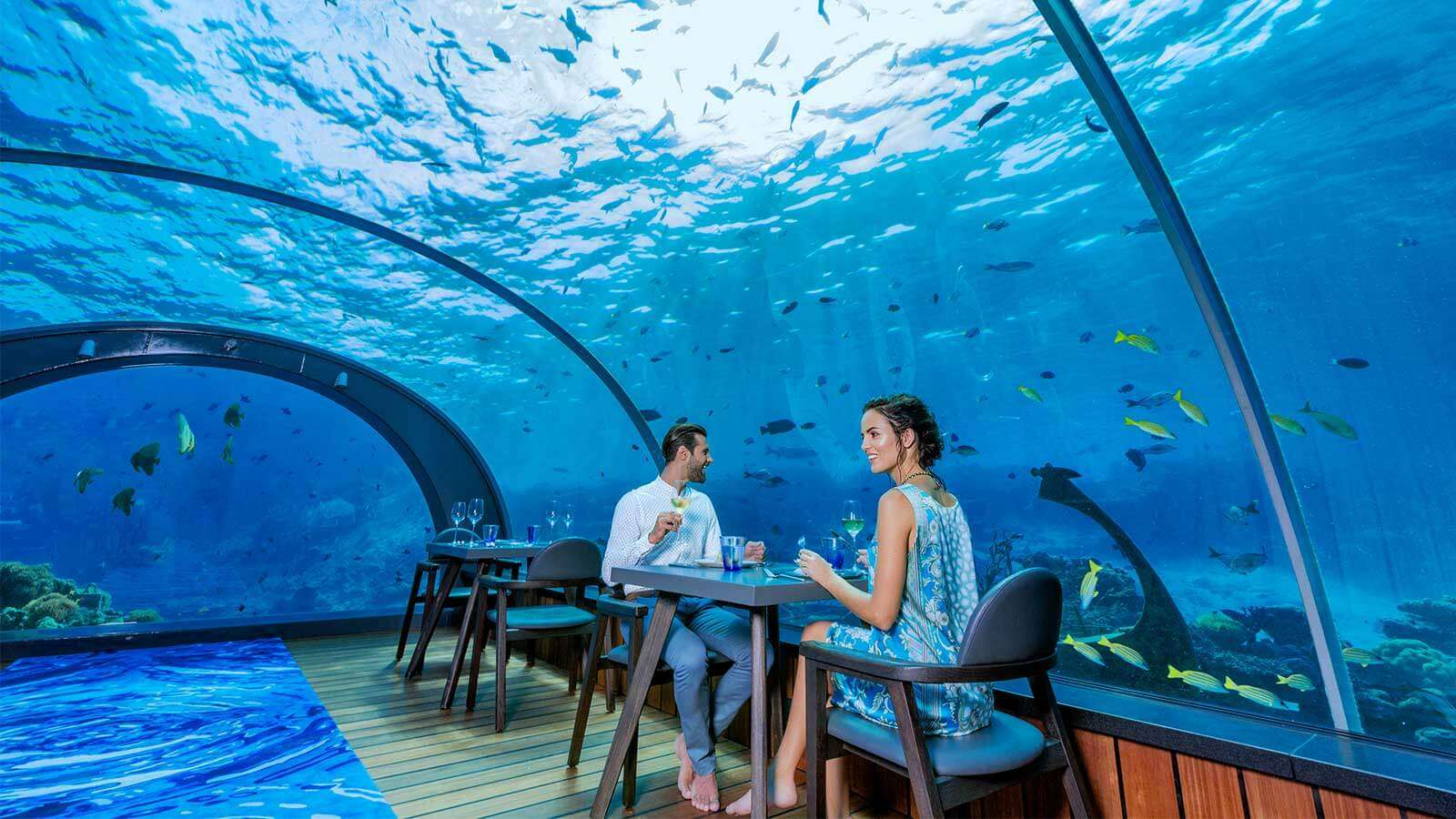 underwater dining experience