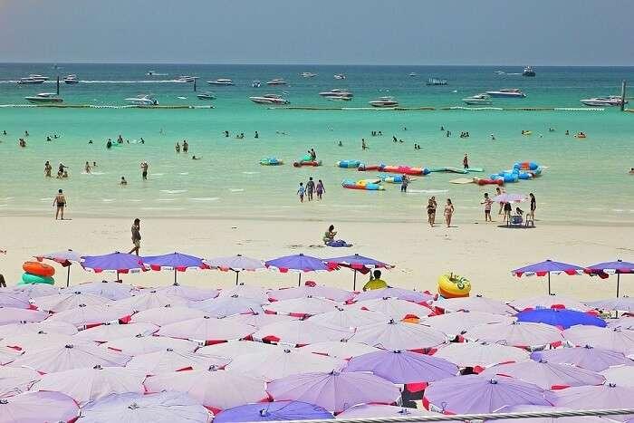sea beach enjoying people Coral Island