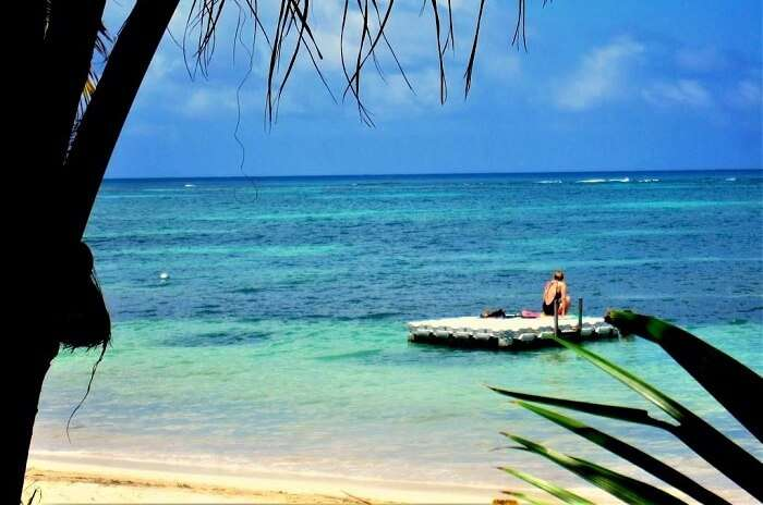 Cosy Island