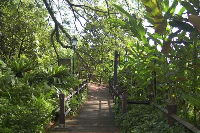 Uphill Fort canning park