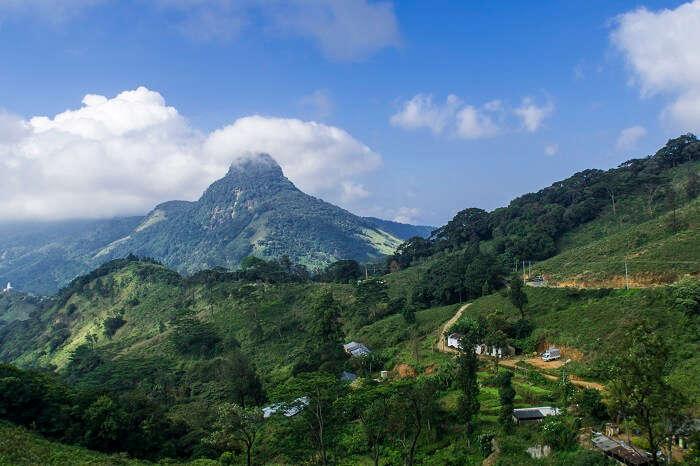 The Knuckles Ranges Sri Lanka