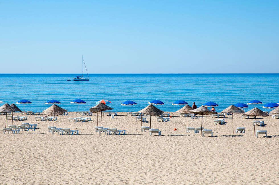 a white sand beach